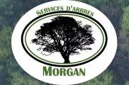 Services d'arbres Morgan Émondage