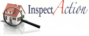 Inspectaction