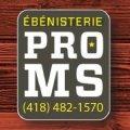 Ébénisterie Pro-MS