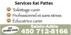 Services Kat Pattes