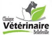 Clinique Vétérinaire Bellefeuille