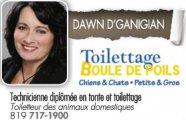 Toilettage Boule de Poils